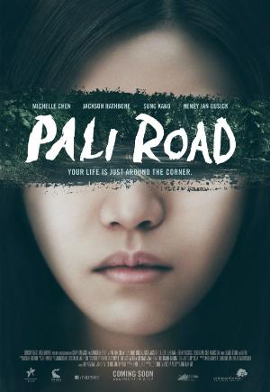 dfn-PaliRoad_poster-300