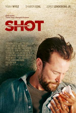 dfn-shot-poster-300