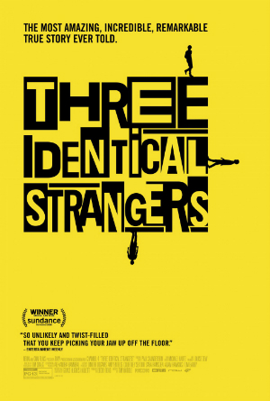 dfn-three_identical_strangers-poster-300