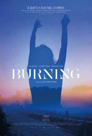 dfn-Burning-poster-300